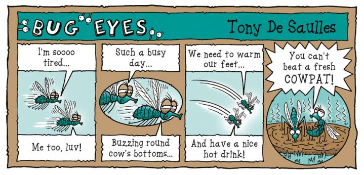 Bug-Eyes