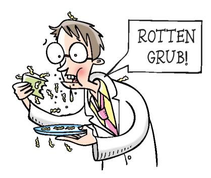 rotton-grub